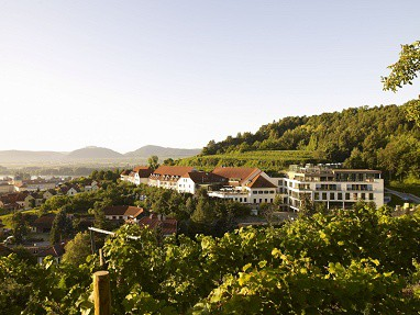 Steigenberger Hotel and Spa Krems: Außenansicht